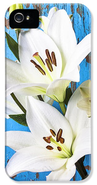 Stamens iPhone 5 Case - Lilies Against Blue Wall by Garry Gay