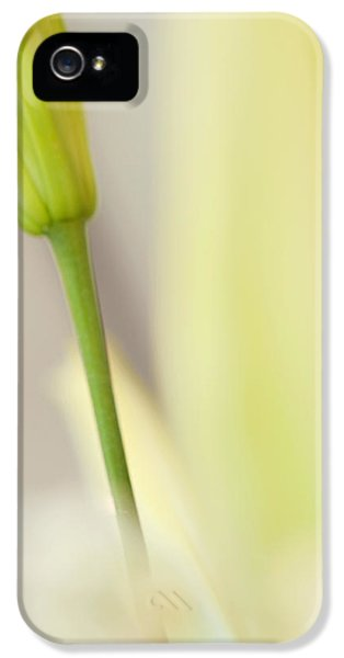 Lily Delight. Floral Abstract IPhone 5 Case