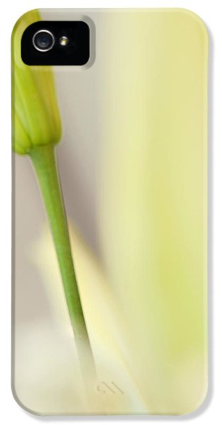 Lily Delight. Floral Abstract IPhone 5 Case by Jenny Rainbow