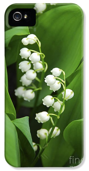 Lily-of-the-valley  IPhone 5 Case