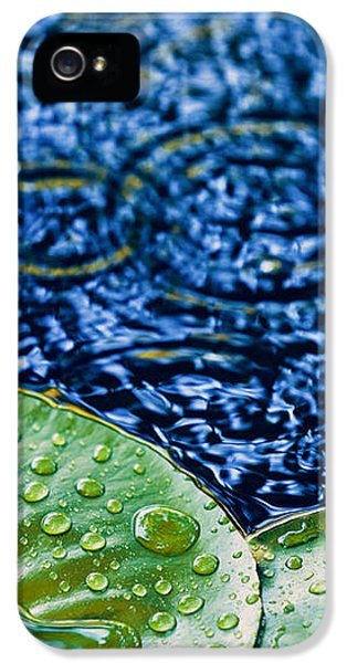 Lily Pads IPhone 5 Case by Debi Bishop