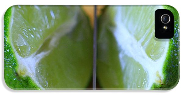 Lime Halves IPhone 5 Case by Dan Sproul