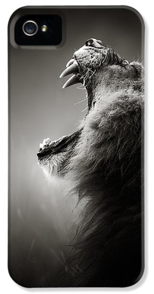 Portraits iPhone 5 Case - Lion Displaying Dangerous Teeth by Johan Swanepoel