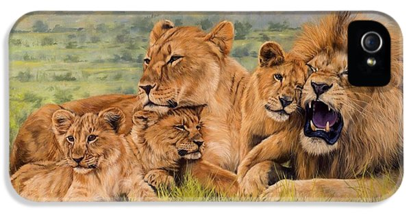Lion Family IPhone 5 Case by David Stribbling