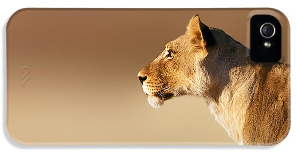 Lioness Portrait IPhone 5 Case by Johan Swanepoel