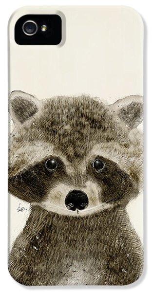 Little Raccoon IPhone 5 Case by Bri B