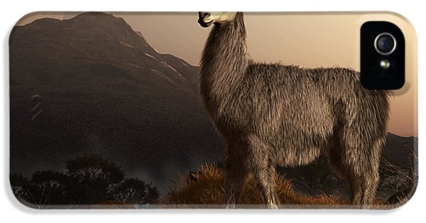 Llama iPhone 5 Case - Llama Dawn by Daniel Eskridge