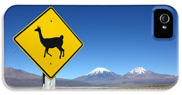 Llamas Crossing Sign IPhone 5 Case by James Brunker