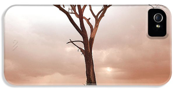 IPhone 5 Case featuring the photograph Lonely Tree by Ricky L Jones