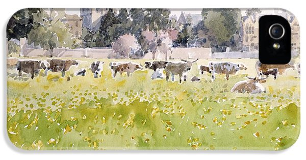 Looking Across Christ Church Meadows IPhone 5 Case by Lucy Willis