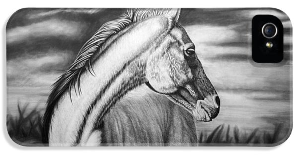 Horse iPhone 5 Case - Looking Back by Glen Powell