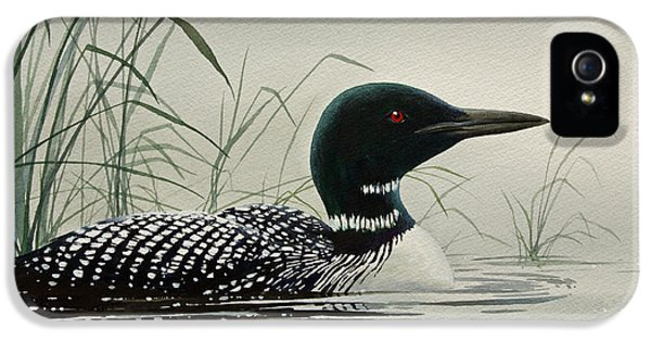 Loon Near The Shore IPhone 5 Case by James Williamson