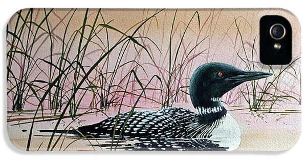 Loon Sunset IPhone 5 Case by James Williamson