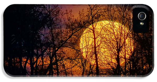 Luminescence IPhone 5 Case by Bill Pevlor