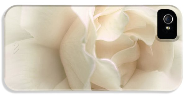 Luminous Ivory Rose Flower IPhone 5 Case by Jennie Marie Schell