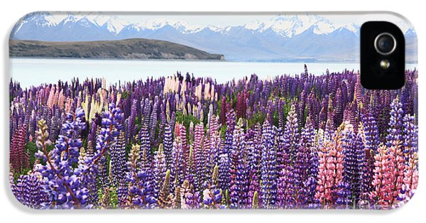 IPhone 5 Case featuring the photograph Lupins At Tekapo by Nareeta Martin