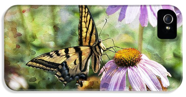 Madame Butterfly IPhone 5 Case