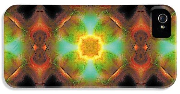 Mandala 135 IPhone 5 Case by Terry Reynoldson