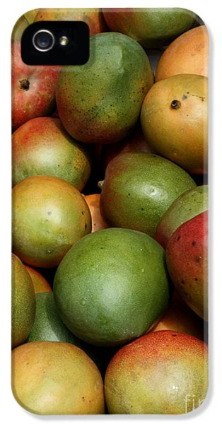 Mangoes IPhone 5 Case by Carol Groenen