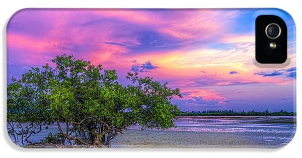 Mangrove By The Bay IPhone 5 Case