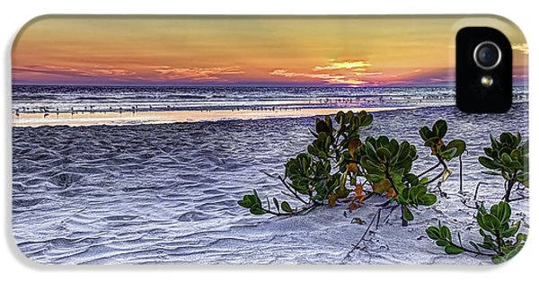 Beach Sunset iPhone 5 Case - Mangrove On The Beach by Marvin Spates