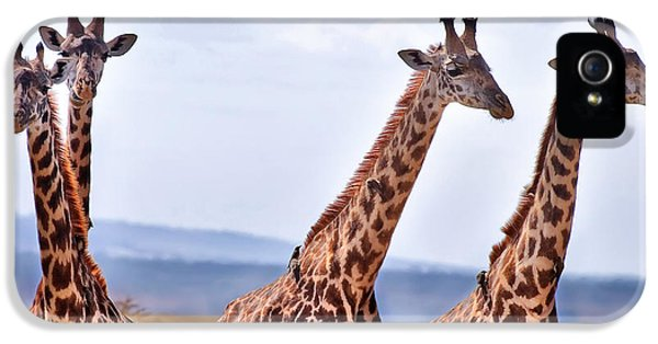 Masai Giraffe IPhone 5 Case