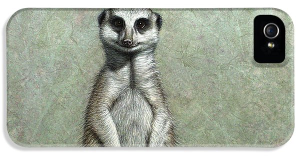 Meerkat IPhone 5 Case by James W Johnson