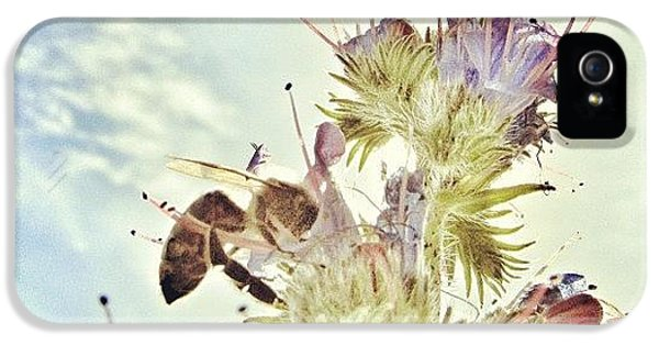 #mgmarts #flower #spring #summer #bee IPhone 5 Case by Marianna Mills