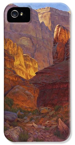 Grand Canyon iPhone 5 Case - Mile 202 Canyon by Cody DeLong