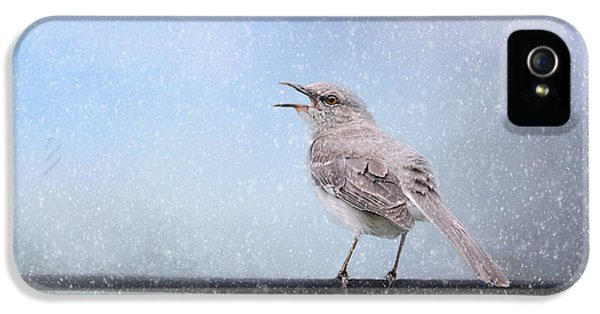 Mockingbird In The Snow IPhone 5 Case by Jai Johnson