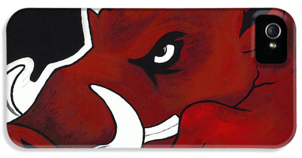 University Of Arkansas iPhone 5 Case - Modern Hog by Jon Cotroneo
