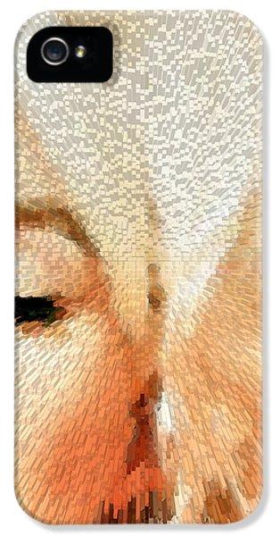 Modern Marilyn - Marilyn Monroe Art By Sharon Cummings IPhone 5 Case by Sharon Cummings