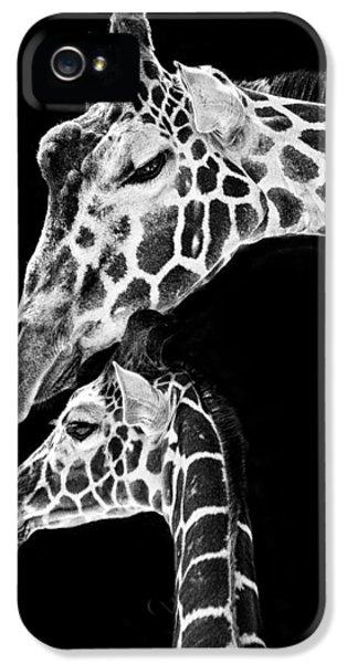 Mom And Baby Giraffe  IPhone 5 Case