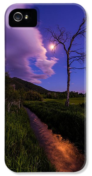 Moonlight Meadow IPhone 5 Case