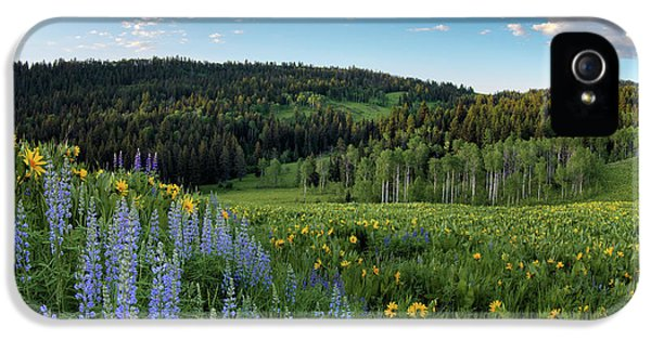 Morning Meadow IPhone 5 Case by Leland D Howard