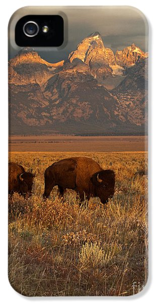 Morning Travels In Grand Teton IPhone 5 Case by Sandra Bronstein