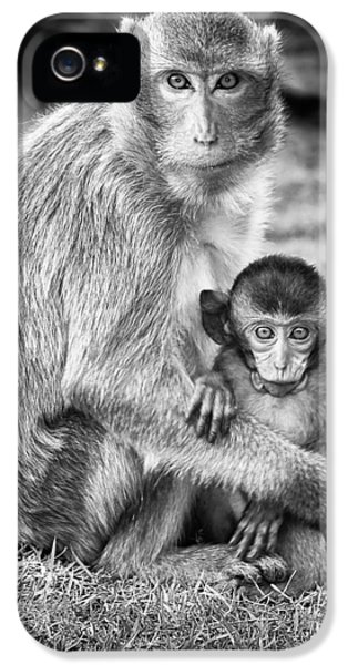 Mother And Baby Monkey Black And White IPhone 5 / 5s Case by Adam Romanowicz
