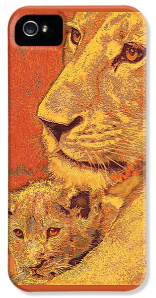 Mother And Cub IPhone 5 / 5s Case by Jane Schnetlage