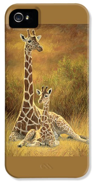 Cow iPhone 5 Case - Mother And Son by Lucie Bilodeau