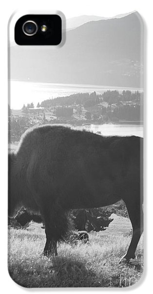 Mountain Wildlife IPhone 5 / 5s Case by Pixel  Chimp