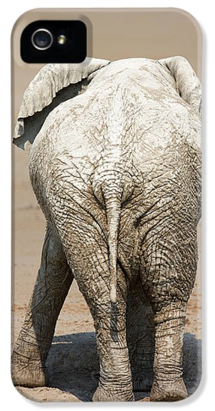 Muddy Elephant With Funny Stance  IPhone 5 Case by Johan Swanepoel