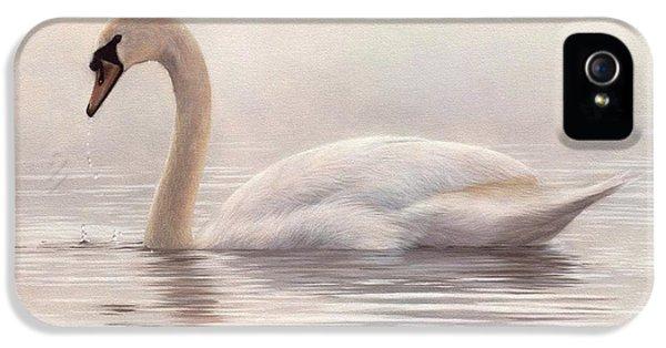 Mute Swan Painting IPhone 5 Case by Rachel Stribbling
