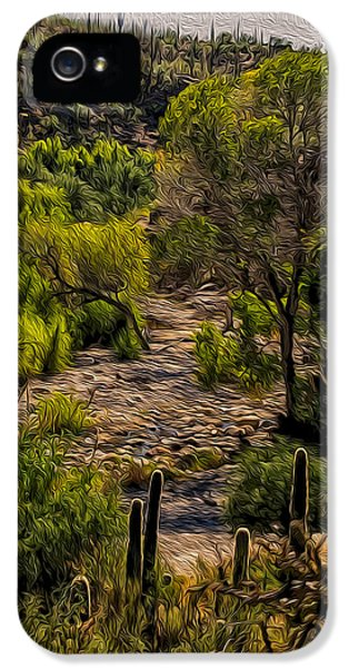 Mystic Wandering IPhone 5 Case by Mark Myhaver
