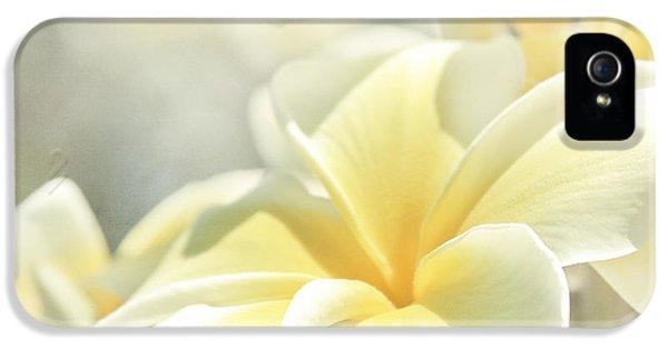 Plumeria Flower iPhone 5 Case - Na Lei Pua Melia Aloha E Ko Lele by Sharon Mau