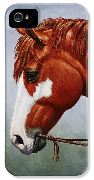 Native American Pinto Horse IPhone 5 Case by Crista Forest