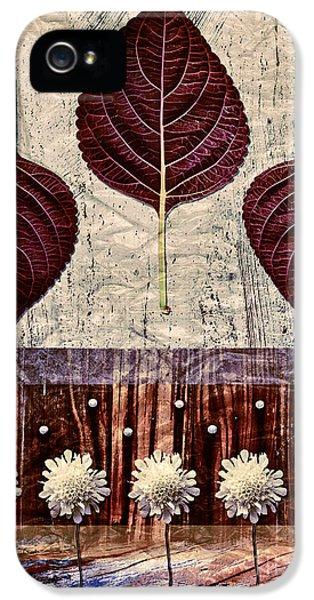 Nature Canvas - 01m4 IPhone 5 Case by Aimelle