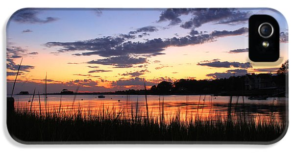 Nature In Connecticut IPhone 5 Case by Mark Ashkenazi