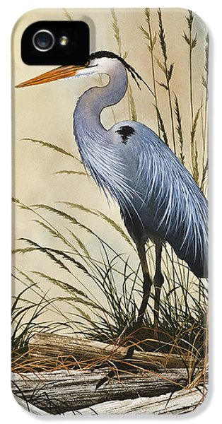 Natures Grace IPhone 5 Case by James Williamson