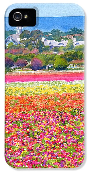 Pacific Ocean iPhone 5 Case - New Carlsbad Flower Fields by Mary Helmreich