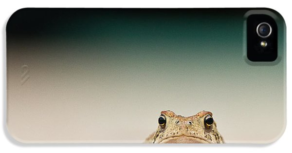 Amphibians iPhone 5 Case - Nowhere Man by Annette Hugen